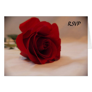 Elegant Red Rose RSVP Note Card