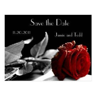 Elegant Red Rose Save the Date Postcards