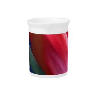 Elegant red tulip pitcher