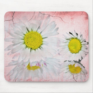 Elegant Romantic Bridal Shower Daisies Wedding Mouse Pads