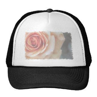 Elegant Romantic Faded Peach Rose Cap