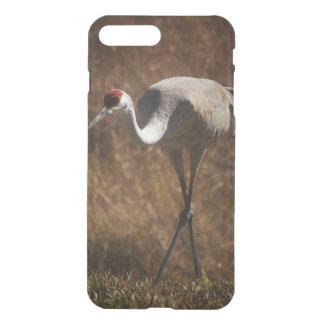 Elegant Sandhill Crane iPhone 8 Plus/7 Plus Case