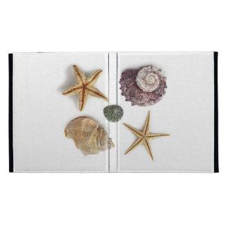 Elegant seashells shabby chic beach iPad case