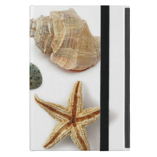 Elegant seashells shabby chic beach covers for iPad mini