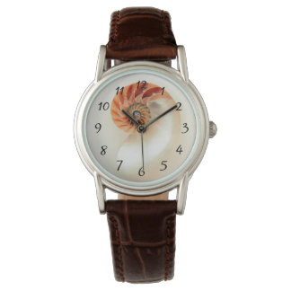 Elegant Shell Numbers Watch