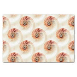 Elegant Shell Pattern Tissue Paper