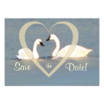 Elegant Swans Save the Date Announcement
