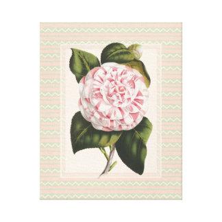 Elegant Vintage Botanical Pink Camellia Flower Canvas Print
