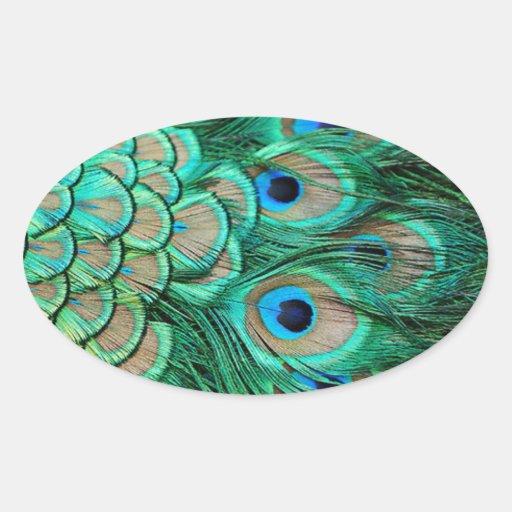 Elegant Vintage Peacock Invitation for Wedding Oval Sticker