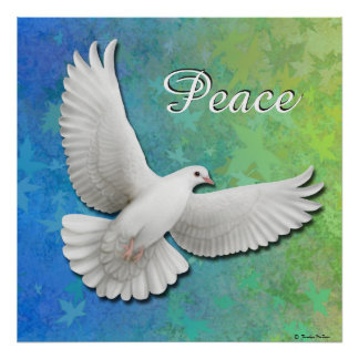 Elegant White Peace Dove Print