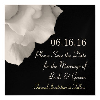 Elegant WHITE Petals Wedding Save the Date Invite