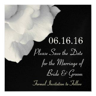 Elegant WHITE Petals Wedding Save the Date Invite