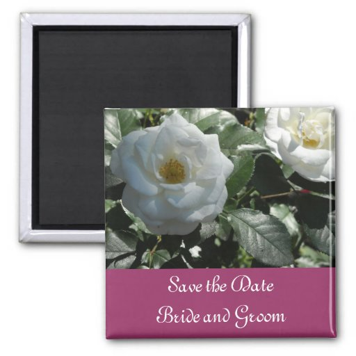 Elegant White Rose Save the Date Magnets