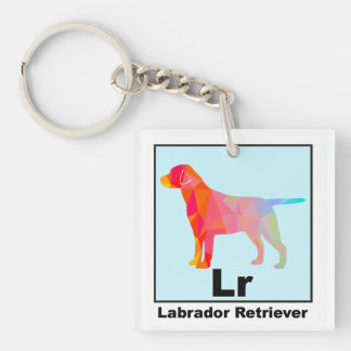 Elemental Lab Retriever Double-Sided Square Acrylic Key Ring