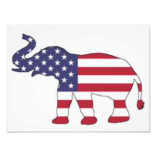 "Elephant ""American Flag"" Photo"