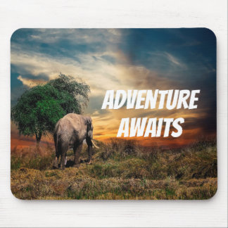 Elephant an evening in the bush with sunset mouse pad