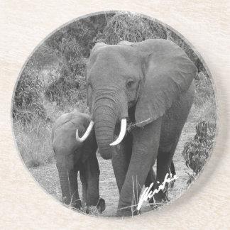 Elephant and Calf Coaster