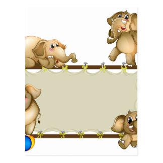 Elephant and frame postcard