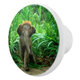 Elephant and Grass Ceramic Knob