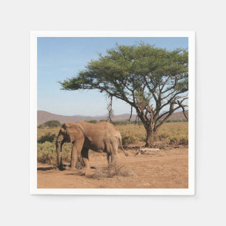 Elephant at Samburu National Reserve Disposable Napkin