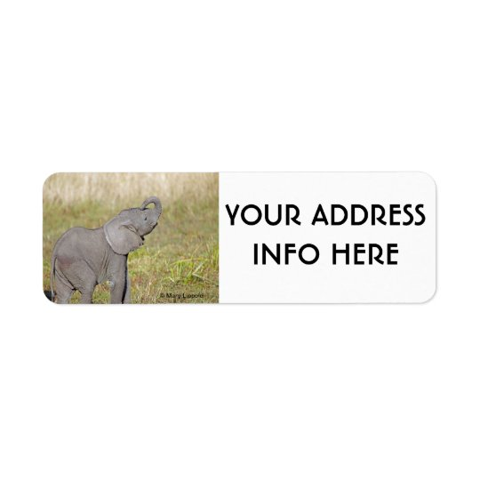 ELEPHANT BABY RETURN ADDRESS LABEL