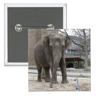 ELEPHANT button