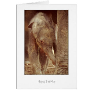 Elephant Calf Birthday Card