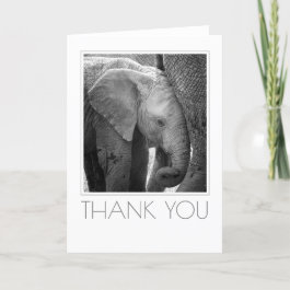 Elephant Calf Staying Close Thank You Card