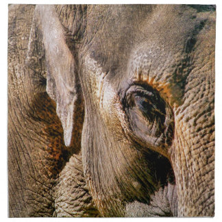 ELEPHANT CLOTH NAPKIN