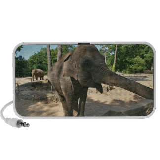 Elephant Doodle Speaker