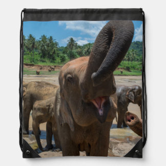 Elephant drinking water, Sri Lanka Drawstring Bag