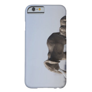 Elephant Family background blue sky Barely There iPhone 6 Case