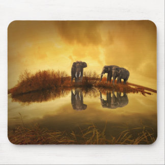Elephant family drinking water mouse pads