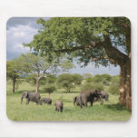 Elephant family mouse mat