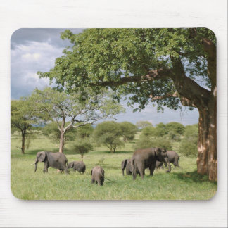 Elephant family mouse pad