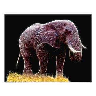 Elephant Fractal Photo Print