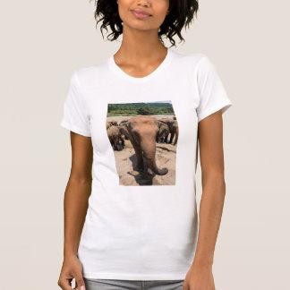 Elephant group portrait, Sri lanka T-Shirt