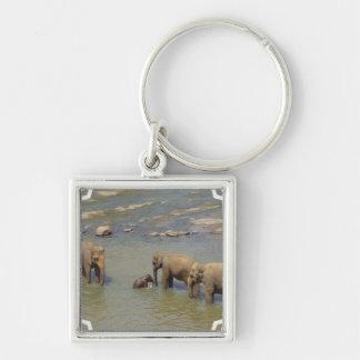 Elephant Herd Keychain