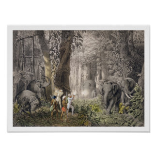 Elephant hunt in the region of Logalla, from 'Trav Poster