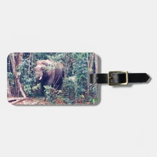 Elephant in Thailand Luggage Tag