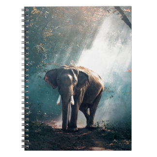 Elephant In The Savannah Notebooks