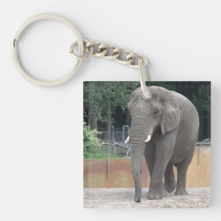 Elephant Acrylic Key Chain
