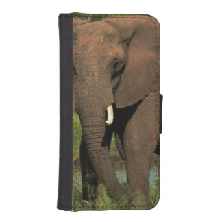 Elephant (Loxodonta Africana), Hwange National iPhone SE/5/5s Wallet Case