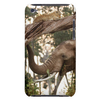 Elephant (Loxodonta) Testing Scent Of Leopard Barely There iPod Cases