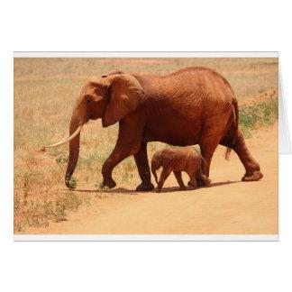 Elephant Mummy and Cub Card