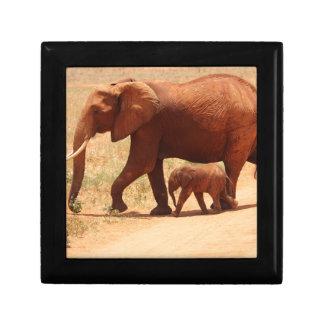 Elephant Mummy and Cub Gift Box
