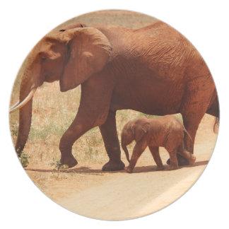 Elephant Mummy and Cub Plate