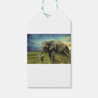 Elephant Nature Gift Tags