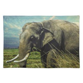 Elephant Nature Placemat