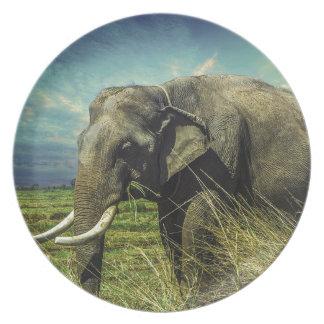 Elephant Nature Plate